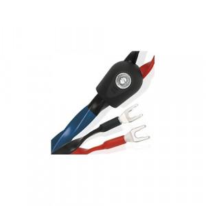 WIREWORLD Oasis 8 kabel głośnikowy (OAB) - 2 m 2x